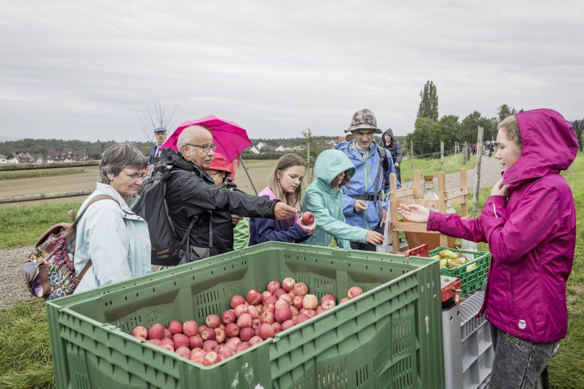 Die Wanderer konnten sich mit frischem Obst vom lokalen Bauernhof verpflegen.